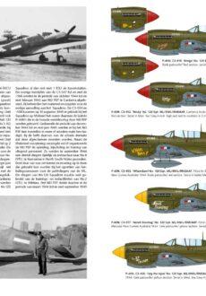 P-40 spread2