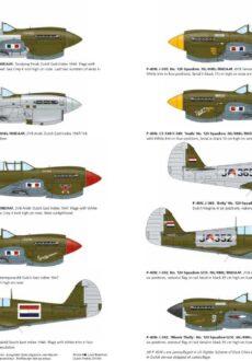 P-40N2 spread2